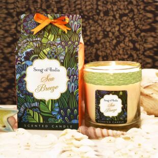 LITTLE PLEASURES SCENTED CANDLE SEA BREEZE