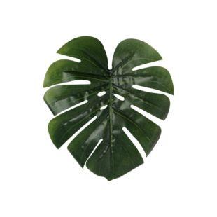 KAARINA TURTLE LEAF PLANT