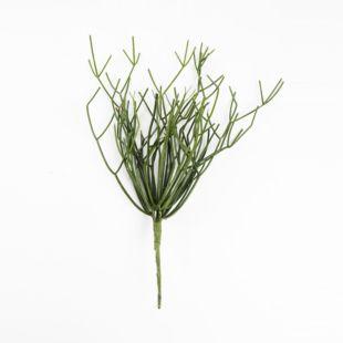 KAEL ANTLER GRASS PLANT